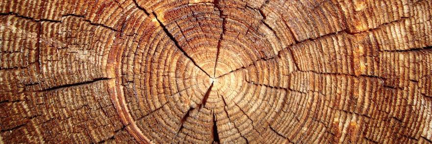 wood_wp